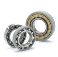 FAG Ceramic Coating F-803478.TR1-J20B Current-Insulated Bearings